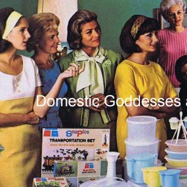 Domestic Goddesses and the Plastic Revolution Online Talk #WOWW
